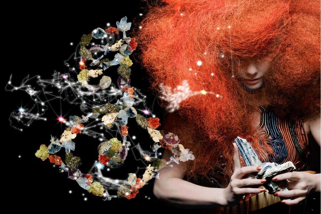 2015_06_10-03 Björk Biophilia