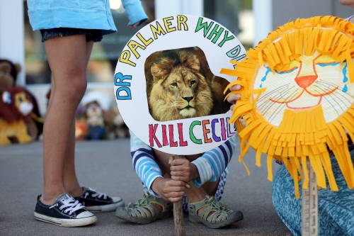 Piper Hoppe, 10, from Minnetonka, Minnesota, holds a sign at the doorway of River Bluff Dental clinic in protest against the killing of a famous lion in Zimbabwe, in Bloomington, Minnesota July 29, 2015. A Zimbabwean court on Wednesday charged a professional local hunter Theo Bronkhorst with failing to prevent an American from unlawfully killing 'Cecil', the southern African country's best-known lion. The American, Walter James Palmer, a Minnesota dentist who paid $50,000 to kill the lion, has left Zimbabwe. He says he did kill the animal but believed the hunt was legal and that the necessary permits had been issued. REUTERS/Eric Miller      TPX IMAGES OF THE DAY