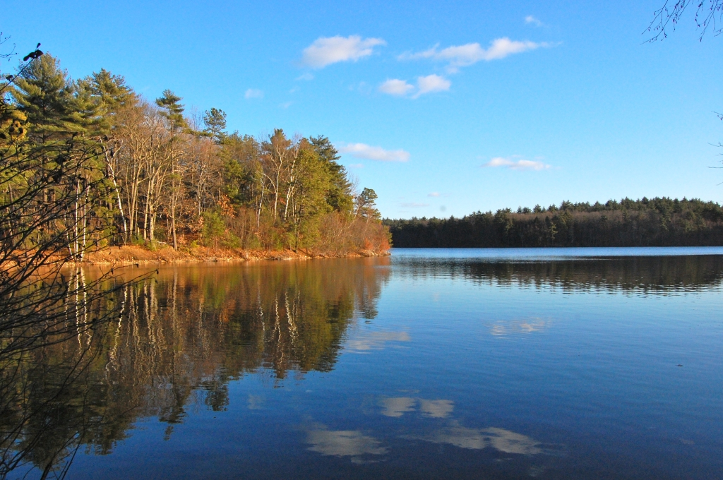 Walden Pond, Concord (MA, USA)