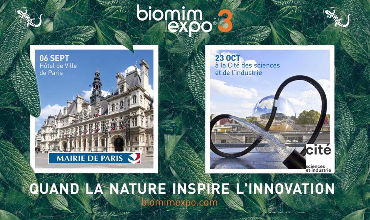 When biophilia meets biomimicry.